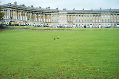 Lawn in front of the British classical architecture Stock Photography
