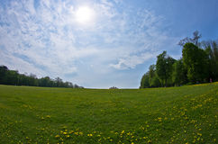 Lawn in front of Gloriette building, Schenbrunn palace in Vienna Stock Photo