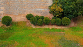 Lawn in front of old castle wall Stock Photography