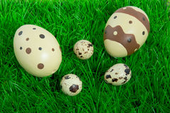 A lawn full of easter eggs Royalty Free Stock Photos