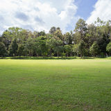 Lawn of golf course, green grass field Royalty Free Stock Photography