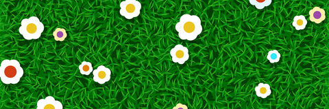 Lawn grass with flowers. Illustration of green lawn grass with colored flowers Stock Image