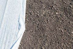Lawn with grass seed and covering nonwoven fabric Royalty Free Stock Photography