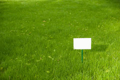 Lawn with green grass and a plaque on the lawn. Royalty Free Stock Photo