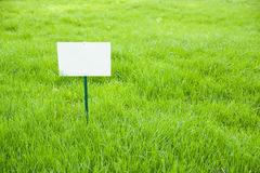 Lawn with green grass and  plaque on the lawn Royalty Free Stock Photography