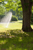 Lawn irrigation. In the middle of the day Royalty Free Stock Images