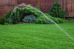 Lawn irrigation. Automatic irrigation home lawn. Spring photo from my garden Stock Photo