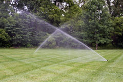 Lawn irrigation. Stock Photos