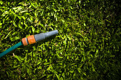 Lawn Maintenance And Garden Care Royalty Free Stock Photography