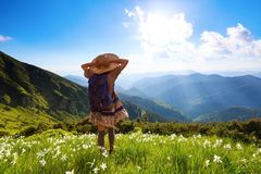 On the lawn in mountains landscapes the hipster girl in dress, stockings and straw hat. The lawn with white daffodils in the high mountains landscapes. The girl Stock Image