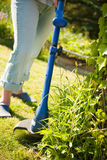 Lawn mower. Woman with lawn mower in front of back yard stock photography