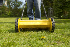 Lawn mower. Man pushing yellow lawn mower Stock Images