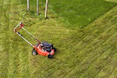 Lawn mower cutting grass on green field in yard. Mowing gardener care work tool.  Stock Photography