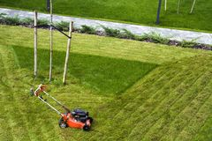 Lawn mower cutting grass on green field in yard. Mowing gardener care work tool.  Stock Images