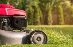 Lawn mower cutting grass Stock Photo
