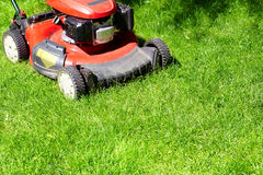 Lawn mower cutting the grass. Red Lawn mower cutting grass in the garden Stock Photography