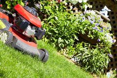 Lawn mower cutting the grass. Red Lawn mower cutting grass in the garden Stock Images