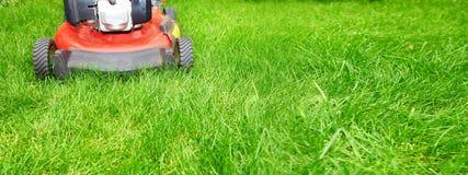 Lawn mower. Cutting green grass in backyard background Stock Photos