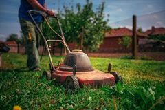 Lawn mower cutting green grass in backyard.Gardening background. Lawn mower cutting green grass in backyard. Gardening background Stock Photography