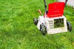 Lawn mower cutting green grass in garden. Stock Photos