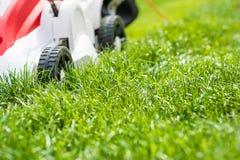 Lawn mower cutting green grass in garden. Stock Image