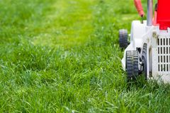 Lawn mower cutting green grass in garden. Royalty Free Stock Photos