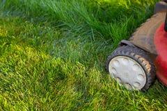 Lawn mower cutting green grass. Stock Image