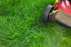 Lawn mower cutting green grass. Work in the garden Stock Photography