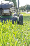 A Lawn Mower Cutting Summer Grass. A lawn mower in the process of cutting the green summer grass Stock Photos