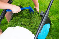 Lawn mower in the garden Stock Images