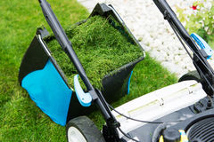 Lawn mower in the garden. Stock Photography