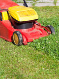 Lawn mower mows green lawn Royalty Free Stock Photo