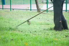 Lawn mowers were used In the lawn. To maintain the level of grass in the field Stock Images