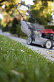 Lawn Mowing. Photograph of a lawn that needs to be cut with a lawn mower royalty free stock image