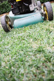 Lawn mowing. Stock Photography
