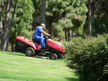 Lawn mowing. In resort royalty free stock image