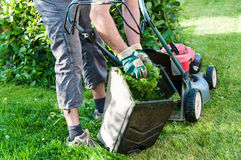 Lawn mowing Royalty Free Stock Images