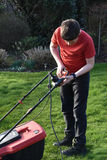 Lawn mowing stock photography