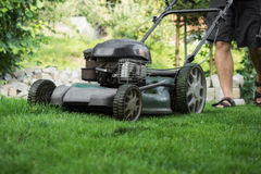 The lawn is mown Royalty Free Stock Photography
