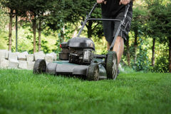 The lawn is mown Stock Image