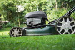 The lawn is mown Royalty Free Stock Photos