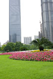 Lawn near to the office building Stock Images