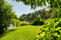Lawn next to river and forest Royalty Free Stock Image