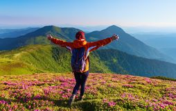 The lawn with the nice bushes of rhododendrons. The tourist with back sack rising up her arms hugging the mountains. Summer day. The lawn with the nice bushes royalty free stock photo