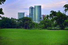 Lawn park and office buildings. stock images