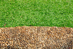 Lawn Stock Images