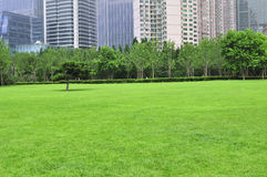 Lawn in qingdao,china Stock Photography