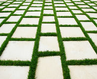 Lawn and rustic paving texture. Rustic paving whit lawn, photo in perpective Stock Image