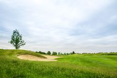 Lawn and sand bunkers for golfing on golf course. Trimmed lawn and sand bunkers for golfing on golf course, nobody. Meadow in sport club, playground with green stock image