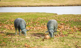 Lawn Sculptures of Two Grazing Sheep Stock Photos